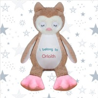Personalised Embroidered Soft Toy Owl